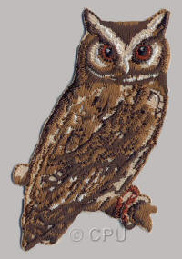 Owl with Brown Eyes